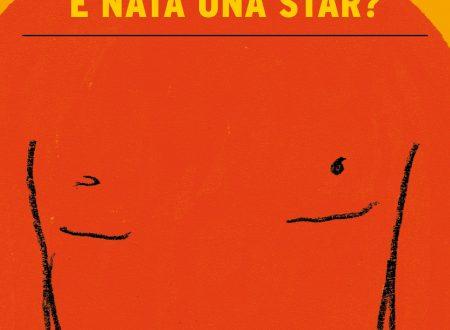 Parlando di: E' nata una star? di Nick Hornby